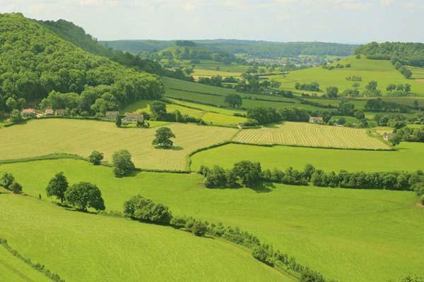 Buying Britain's Farmland