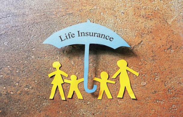 A Detailed Study Of Online Life Insurance Quotes Interesting Level Term Life Insurance Quote